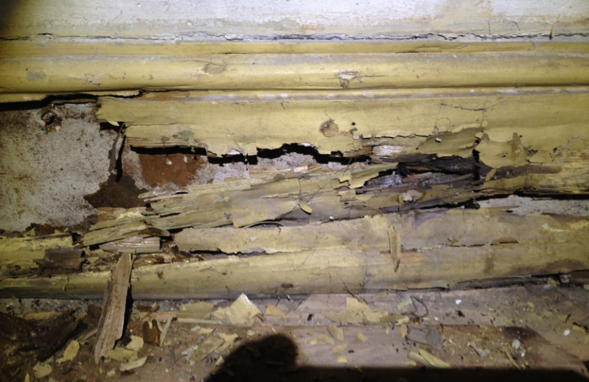 Treatment for Dry Rot in Bournemouth