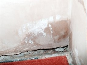 Dampness in Walls